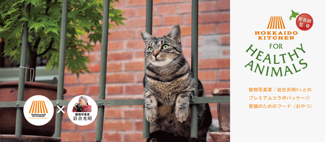 岩合さんコラボ猫用おやつ